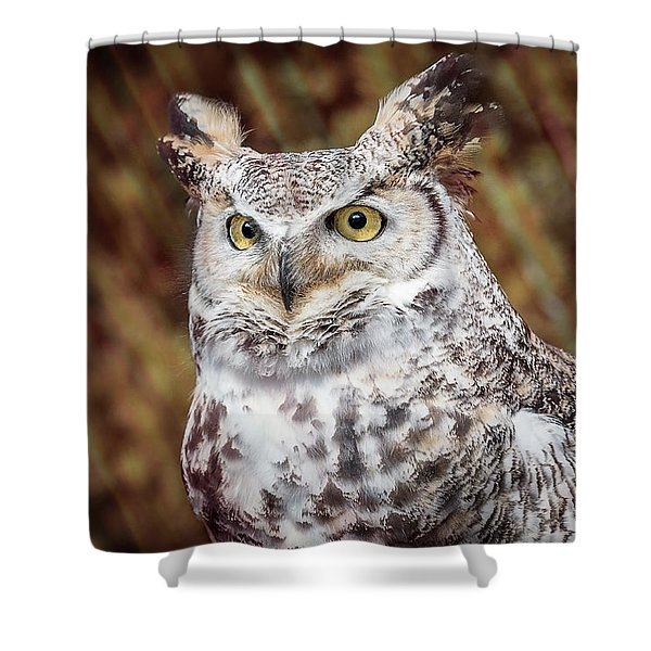 Shower Curtain featuring the photograph Great Horned Owl Portrait by Patti Deters