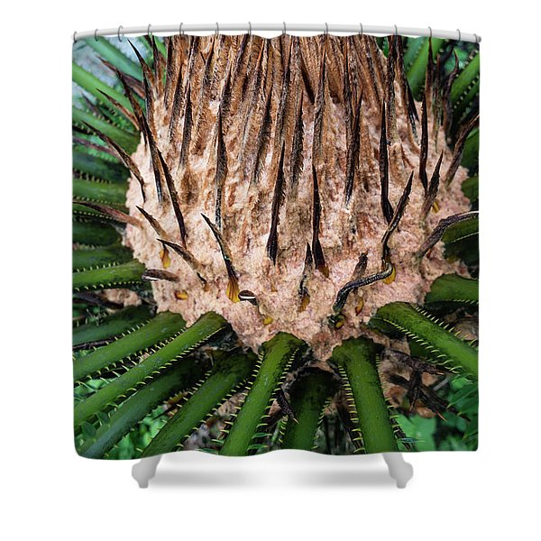 Shower Curtain featuring the photograph Green Abstract Series No.10 by Juan Contreras
