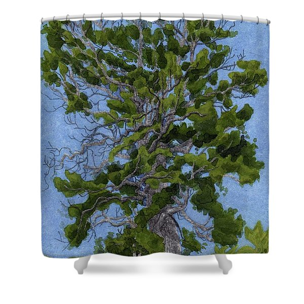 Green Tree, Hot Day Shower Curtain