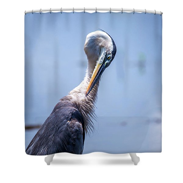 Grooming Shower Curtain