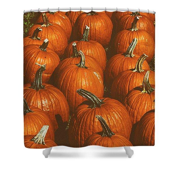 Halloween Harvest - 2 Shower Curtain