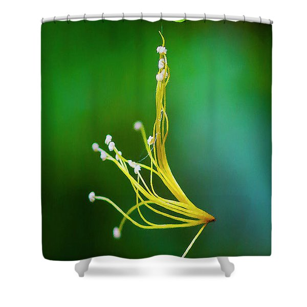 Hanging By A Thread Shower Curtain