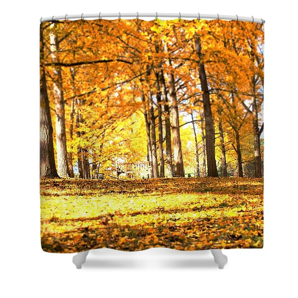 Have A Seat Shower Curtain