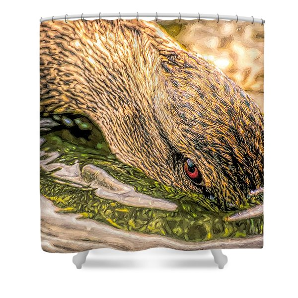 Head Dunking Duck Toned Shower Curtain