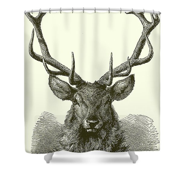 Head Of A Male Red Deer Shower Curtain