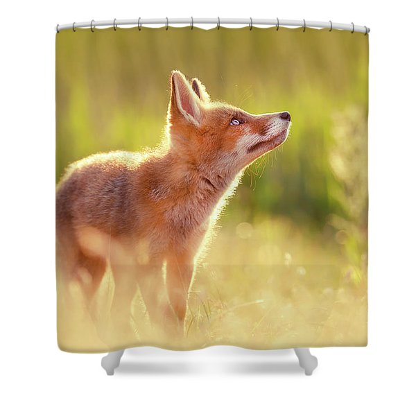 Head Up High - Young And Eager Fox Kit Shower Curtain