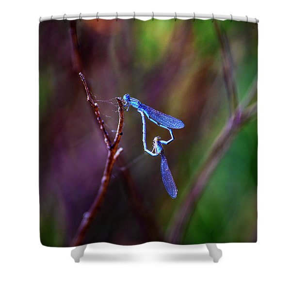 Heart Of Dragonfly Shower Curtain