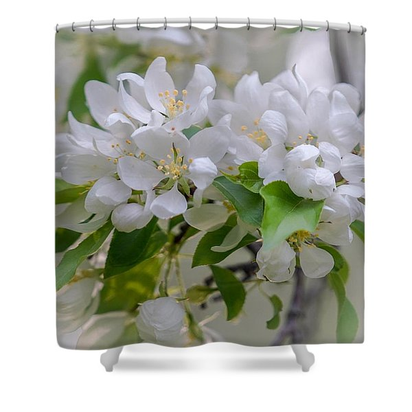 Heavenly Blossoms Shower Curtain