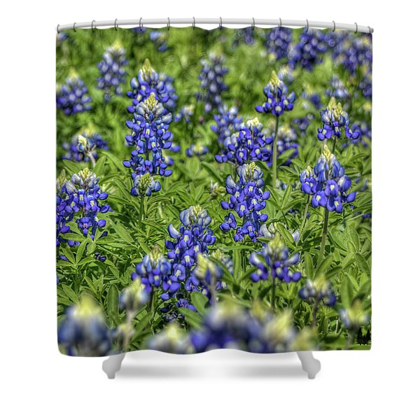 Heavenly Bluebonnets Shower Curtain