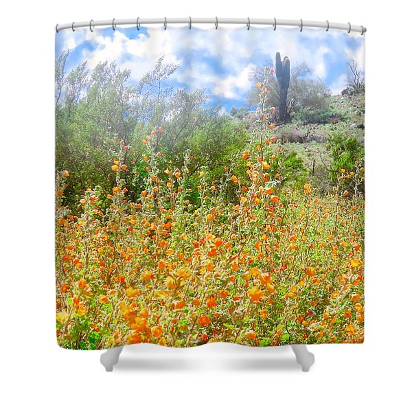 Heavenly Home In Arizona Shower Curtain