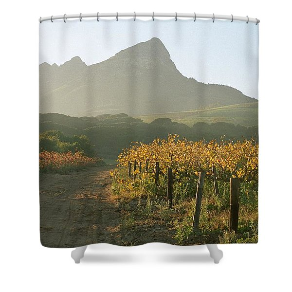 Helderburg Vineyard Shower Curtain