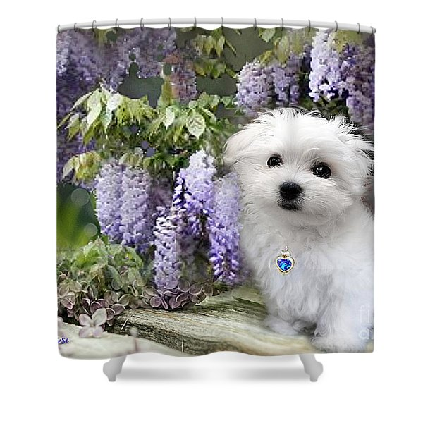 Hermes And Wisteria Shower Curtain