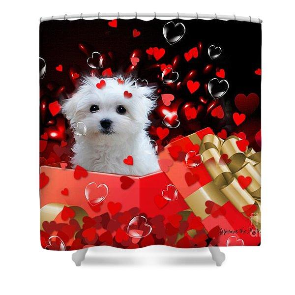 Hermes The Valentine Boy Shower Curtain