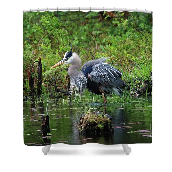 Heron In Beaver Pond Shower Curtain
