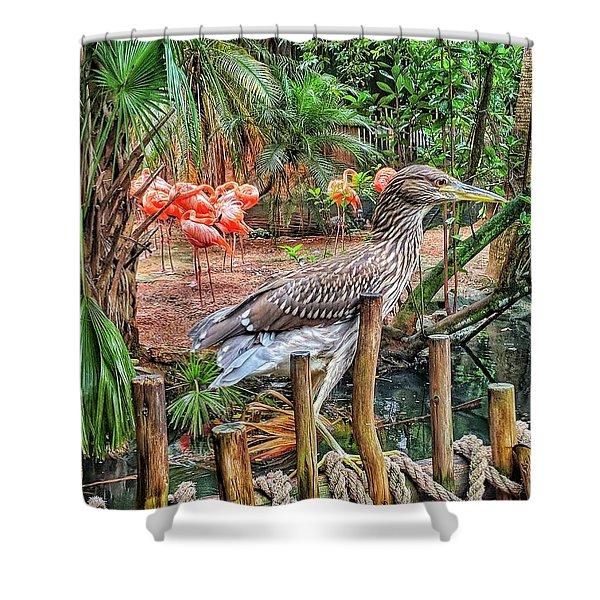 Heron On Guard Shower Curtain