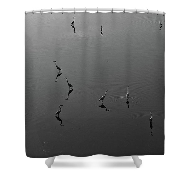 Herons On Lake 367 In Black And White Shower Curtain