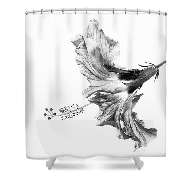 Hibiscus In Black And White Shower Curtain