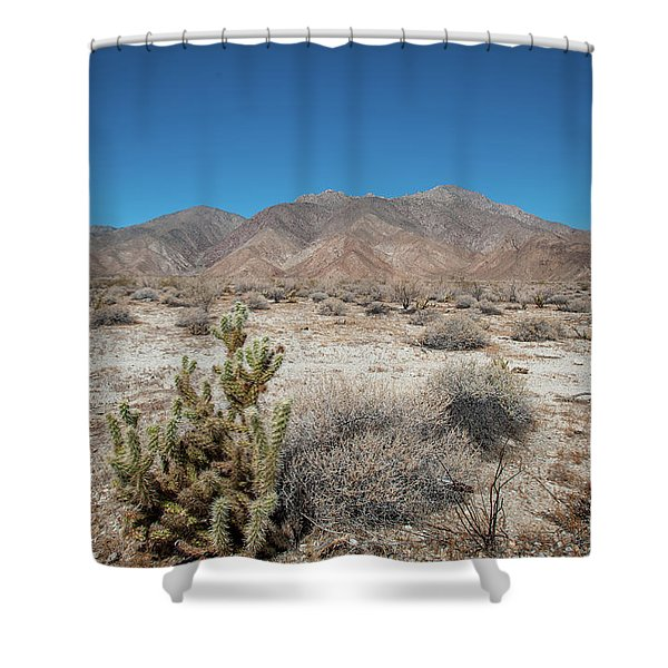 High Desert Cactus Shower Curtain