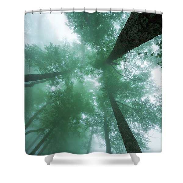 High In The Mist Shower Curtain