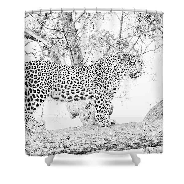 High Key Leopard Shower Curtain