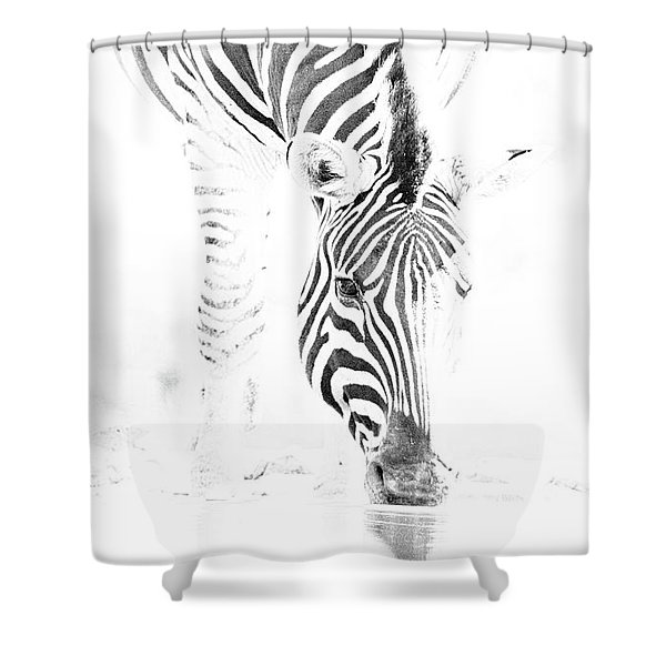 High Key Zebra Drinking Shower Curtain