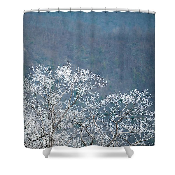 Hoarfrost Collects On Branches Shower Curtain