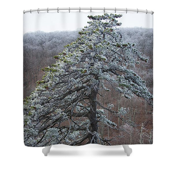 Hoarfrost Gathers Shower Curtain