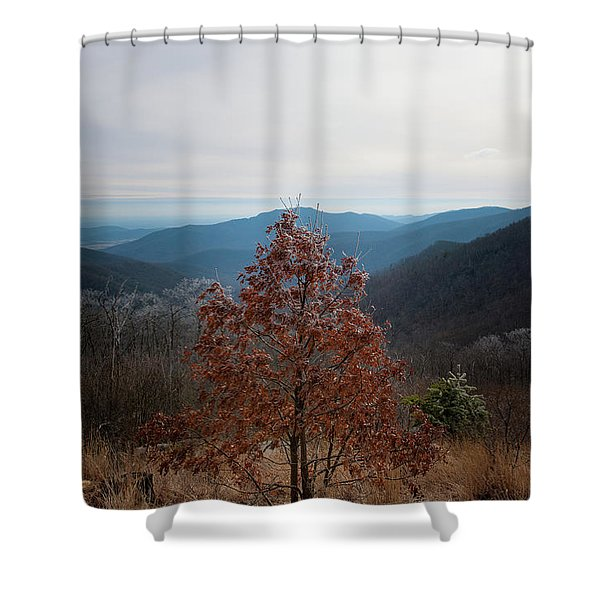 Hoarfrost On Fall Leaves Shower Curtain