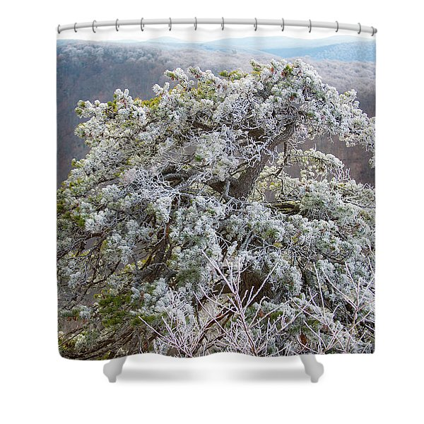 Hoarfrost On Trees Shower Curtain