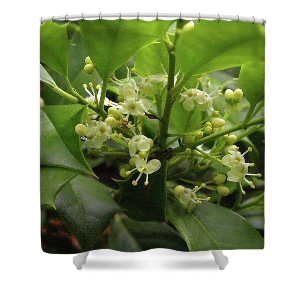 Holly Blossoms Shower Curtain