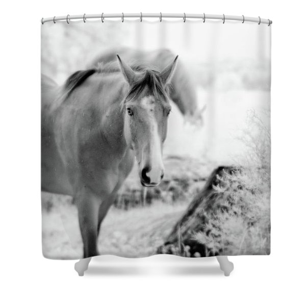 Horse In Infrared Shower Curtain