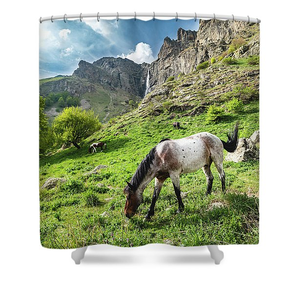 Shower Curtain featuring the photograph Horse On Balkan Mountain by Milan Ljubisavljevic