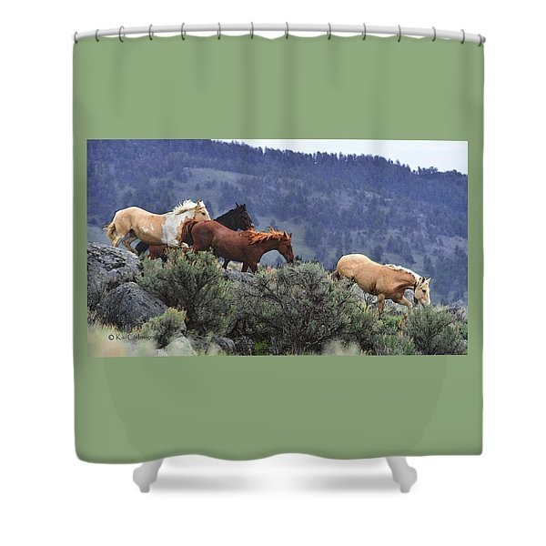 Horses On A Downhill Run Shower Curtain