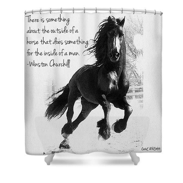 Horse's Profound Spirit  Shower Curtain