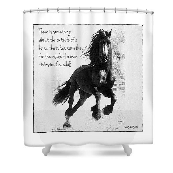 Horse's Profound Spirit  Shower Curtain
