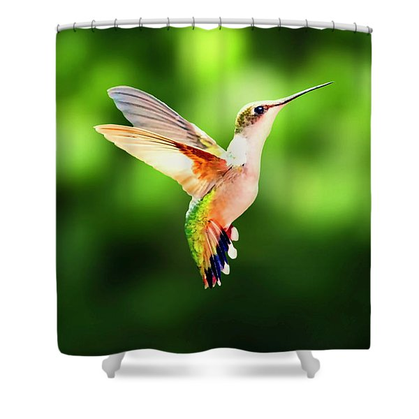 Shower Curtain featuring the photograph Hummingbird Hovering by Meta Gatschenberger