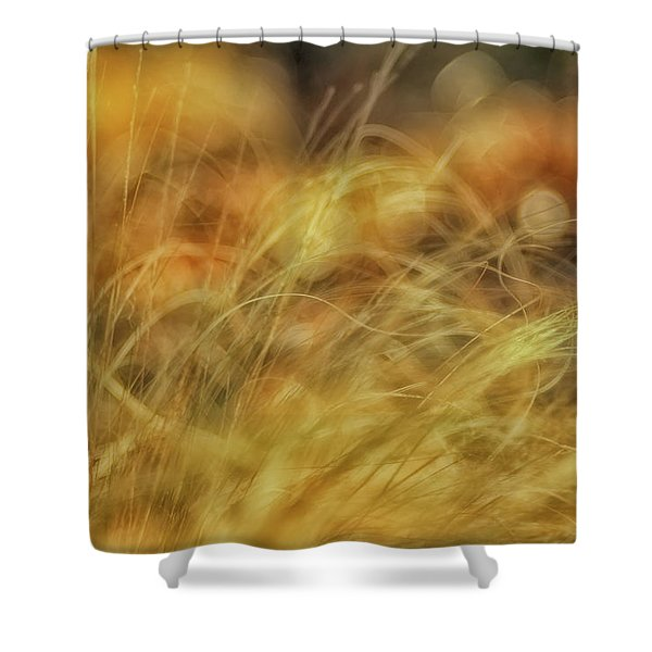 Humor Of Acquiescence Shower Curtain