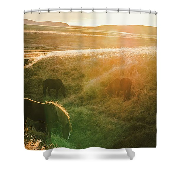 Icelandic Landscapes, Sunset In A Meadow With Horses Grazing  Ba Shower Curtain