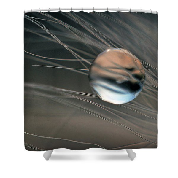 Shower Curtain featuring the photograph Imagine by Michelle Wermuth