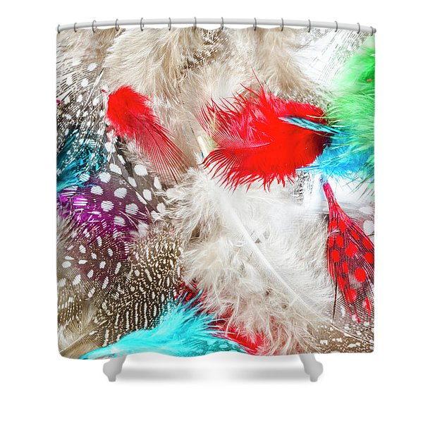 In Quill Colors Shower Curtain