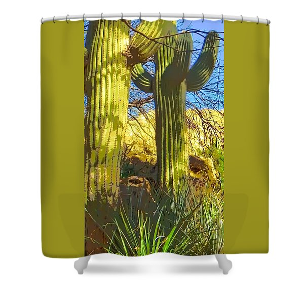 In The Shadow Of Saguaros Shower Curtain