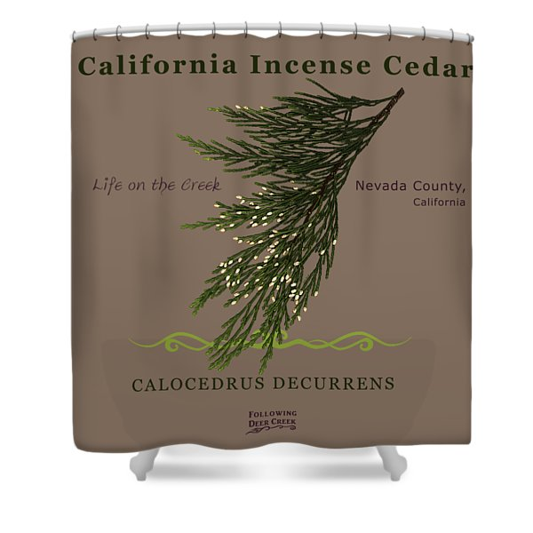 Incense Cedar - Brpwn Text Shower Curtain