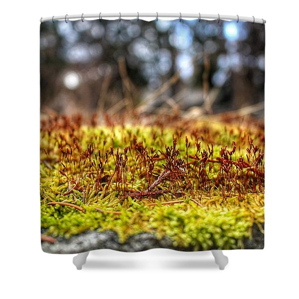 Inchoate Shower Curtain