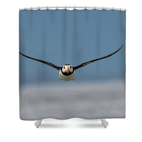 Incoming Puffin Shower Curtain