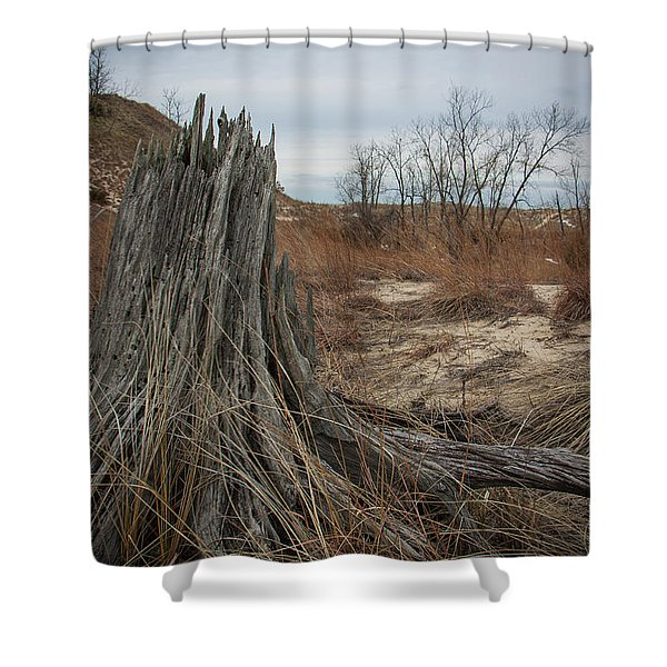 Indiana Dunes Shower Curtain