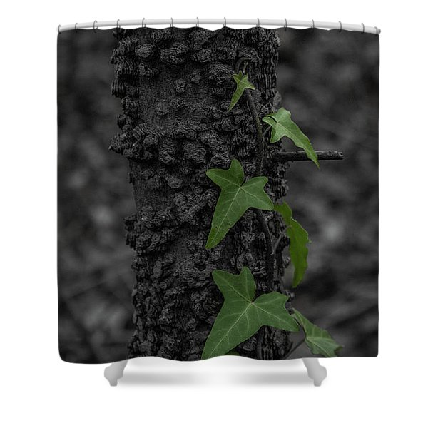Industrious Ivy Shower Curtain