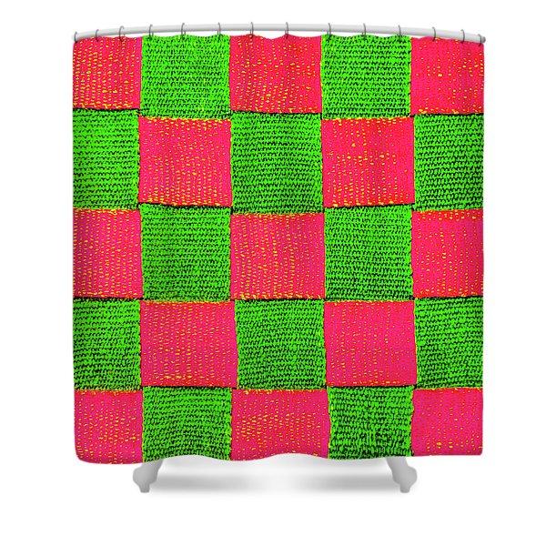 Interlaced Canvas Straps 2 Shower Curtain