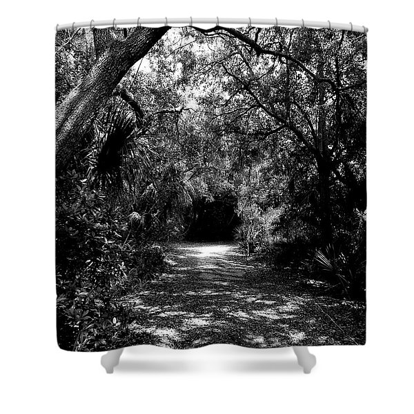 Into The Darkness Shower Curtain