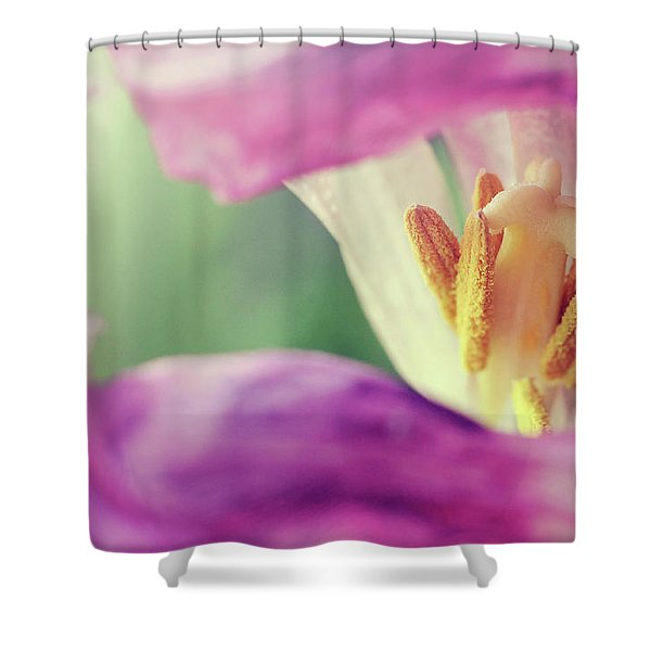 Shower Curtain featuring the photograph Inward Beauty by Michelle Wermuth