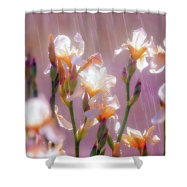 Iris In Rain Shower Curtain